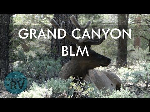 Grand Canyon BLM - Tusayan AZ - Boondocking | vlog23 | Full Time RV Living