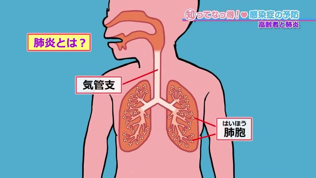 肺 コロナ 痛い ウイルス が