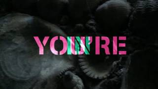 Prof. Winkler - In your head (Stereo MC's Remix) OFFICIAL VIDEO