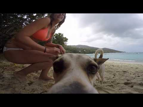 Beautiful St John, Virgin Islands 2016 Trip video