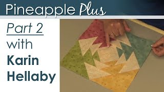 Pineapple Plus - Part 2 with Karin Hellaby