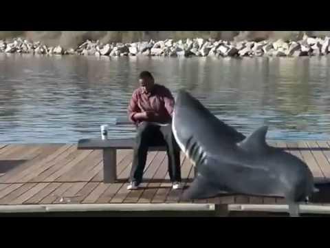 Nicorette Shark Commercial