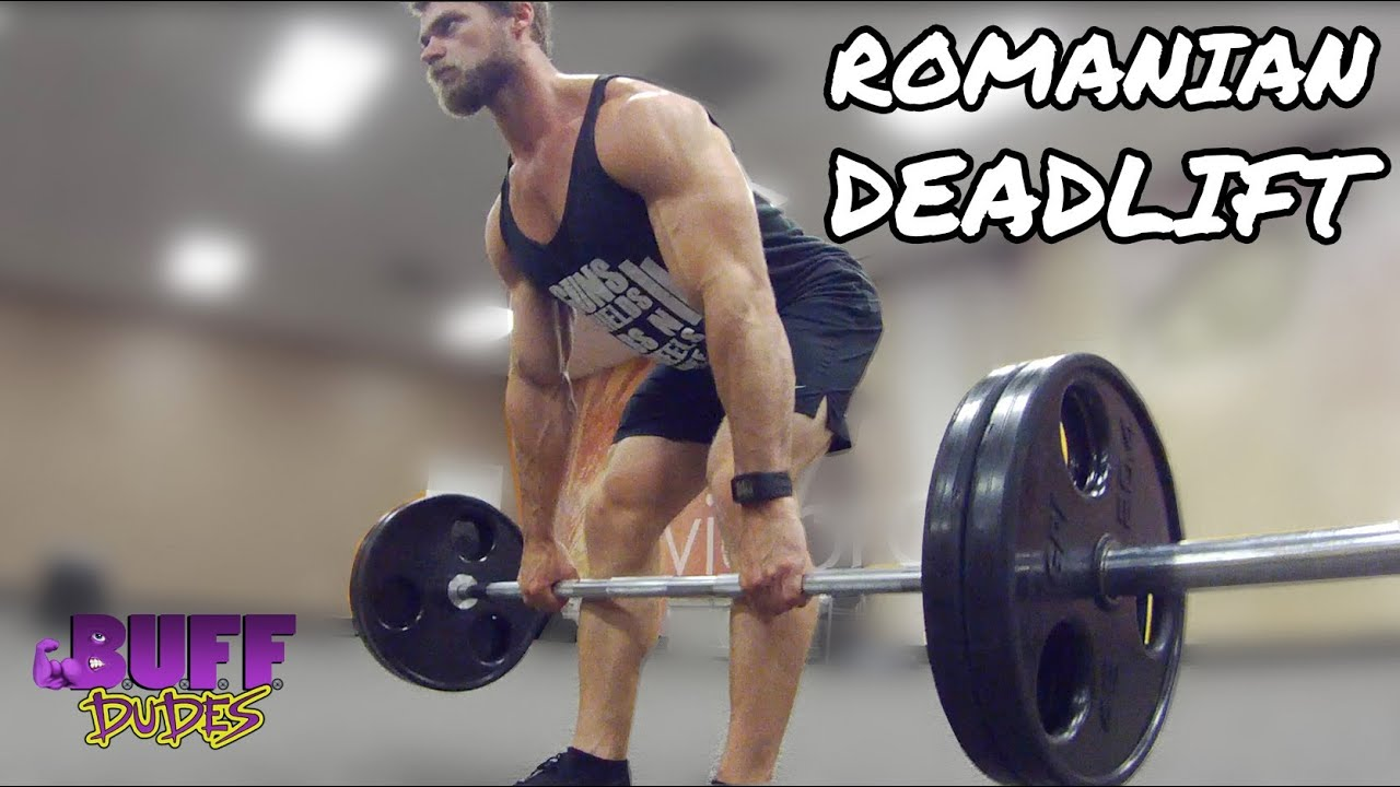 proper rdl form  How to Perform Romanian Deadlift - Hamstring Leg Exercise