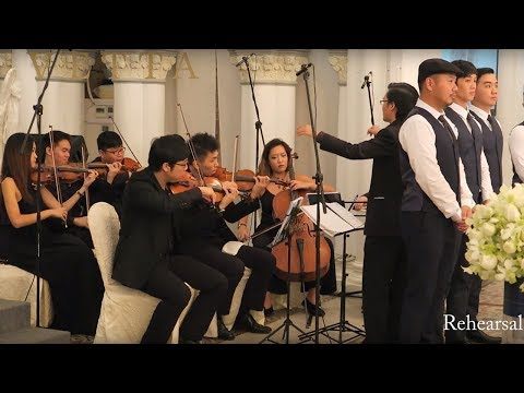 String Orchestra / String Ensemble - Singapore Wedding at CHIJMES