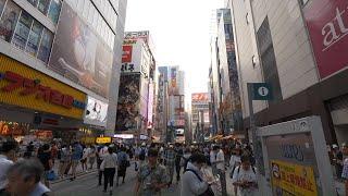 【4K】Evening Akihabara walk by the trail of Steins; Gate STEINS;GATE 検索動画 43