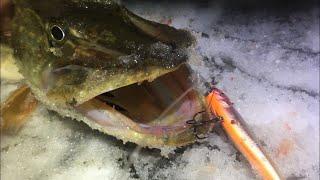 Зимний СПИННИНГ на МОСКВА РЕКЕ Днём ДЖИГ ночью ВОБЛЕРЫ Рыбалка на сломе погоды Февраль 2020