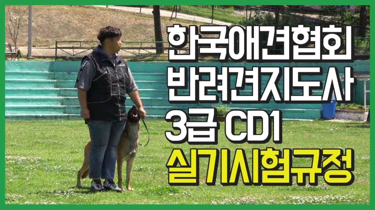 한국애견협회 반려견지도사 3급 실기시험규정