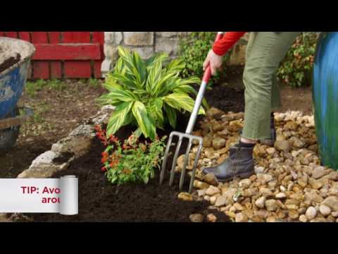How to Mulch a Flower Bed | Troy-Bilt®