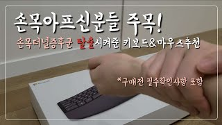손목터널증후군 탈출! 마이크로소프트 스컬프트 인체공학 …