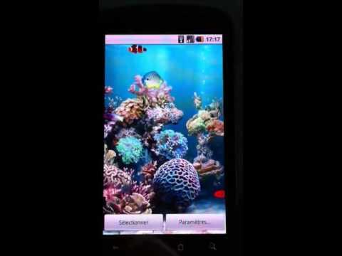 Anipet aquarium live wallpaper - YouTube