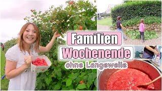 Himbeeren pflücken & Marmelade kochen | Gartenarbeit machen | Mamiseelen