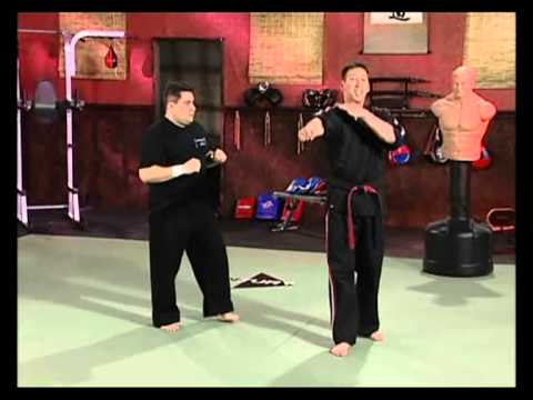 Volume 4: Pressure Point Knockouts: Moving Attacks with Sparring part 2