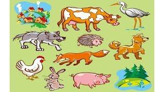 Мультики для детей. Животные. Учимся отличать домашних от диких.
