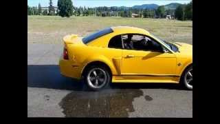 2004 Yellow Mustang GT Awesome Burnout