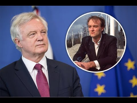 David Davis labelled 'thick as mince' by Brexit chief in BRUTAL personal jibe