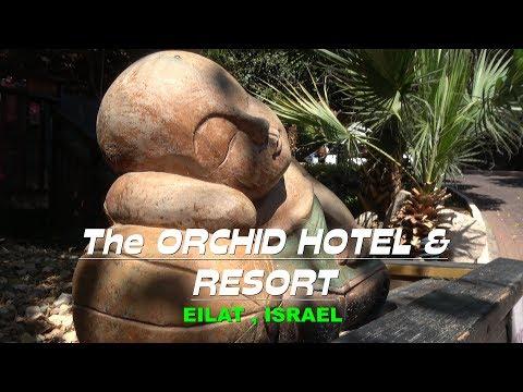 The Orchid Hotel \u0026 Resort   Eilat , Israel 4K