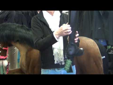 Mountain Horse Venice High Rider Field Boots