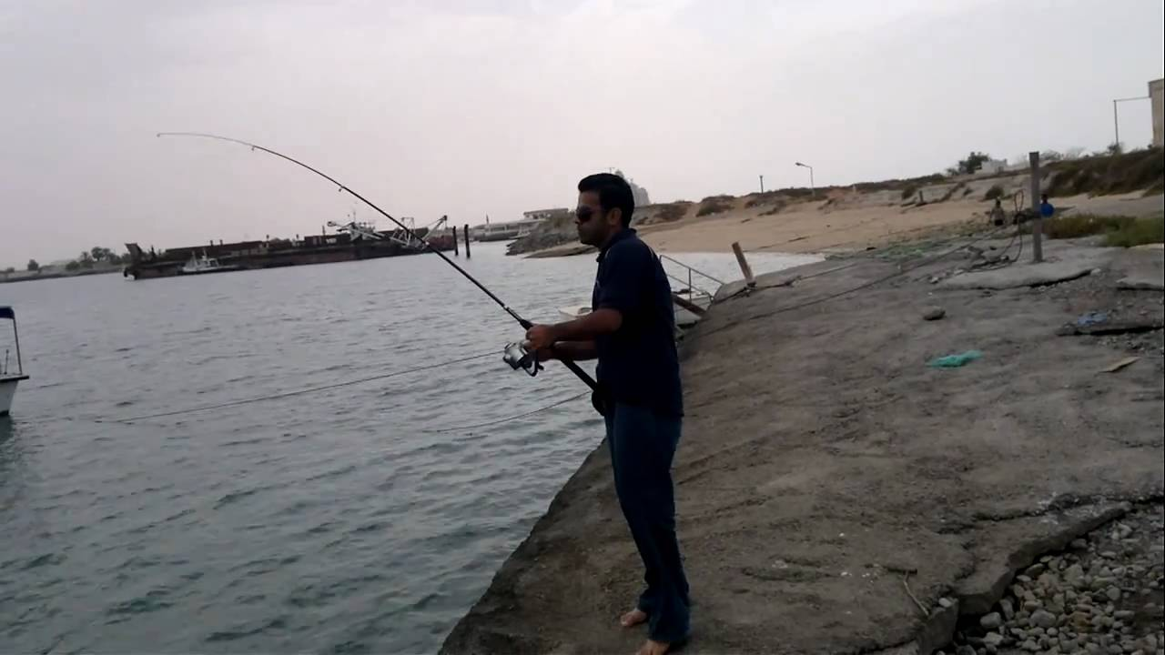 Ara group fishing in dubai 5 stingray youtube for Fishing in dubai