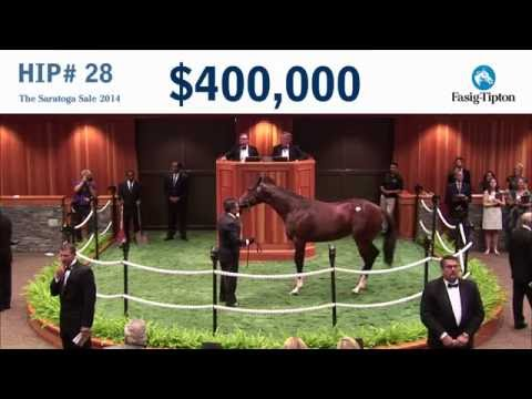 Before They Were Stars: Champion SONGBIRD At The 2014 Saratoga Sale