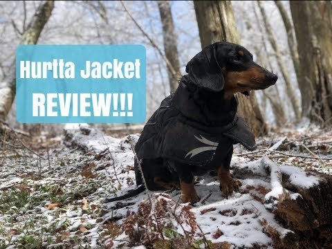Hurtta jackets review: Rain jacket and cold weather jacket for my wiener dog on Appalachian Trail