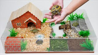 The abandoned turtle has a better habitat with a new mini brick house