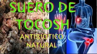 SUERO DE TOCOSH - PREPARACIÓN CASERA : ANTIBIOTICO NATURAL