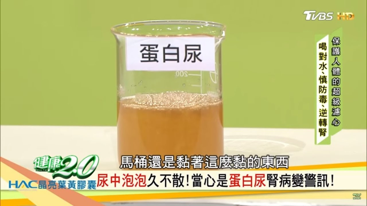 蛋白 原因 尿