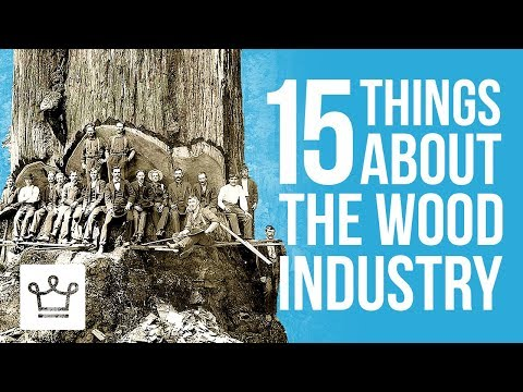 15 Things You Didn't Know About The Wood Industry
