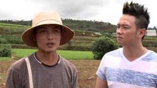Hướng dẫn trồng Cà rốt