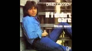 Watch David Cassidy If I Didnt Care video