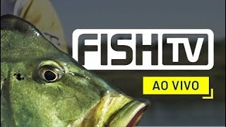 PESCARIA 24 HORAS POR DIA 👉 INSCREVA-SE 🎣 FISH TV AO VIVO