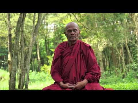 Four Foundations Of Mindfullness | Part 1 | Bhante Henepola Gunaratana