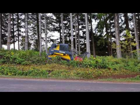 Brush clearing in Vancouver Washington