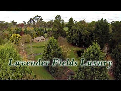 Luxury Accommodation Adelaide Hills - Lavender Fields Luxury Accommodation