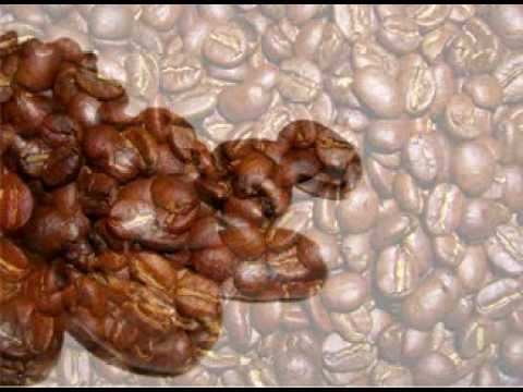 Everything About Coffee And Coffee Beans