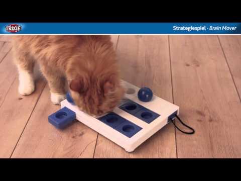 TRIXIE Heimtierbedarf - Cat Activity Strategiespiel Brain Mover