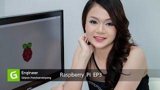 raspberry pi vdo ep3 gpio
