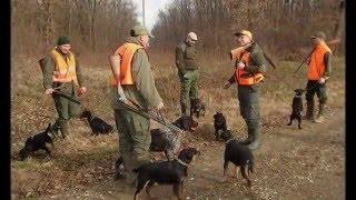 Repeat youtube video Deutscher Jagdterrier