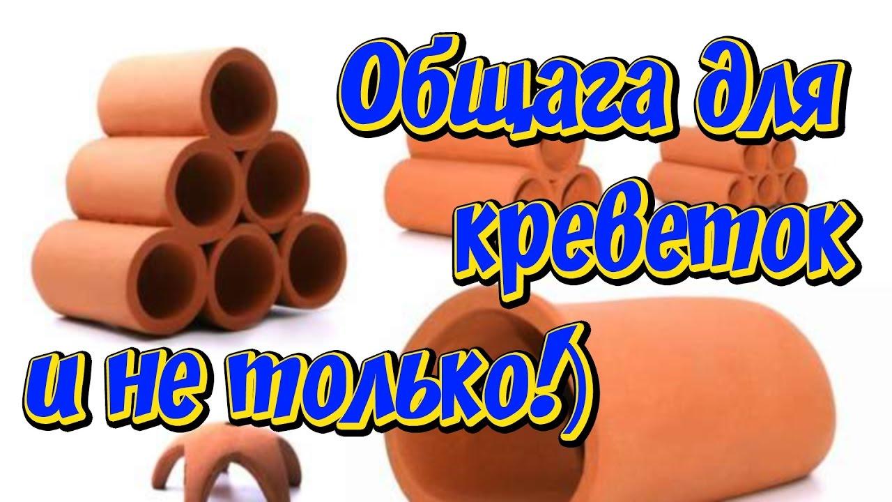 24 сен 2018. Объявление о продаже креветка морепродукты без льда в наличии в новосибирской области на avito.