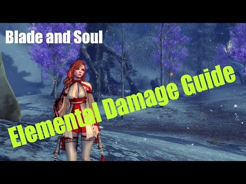 [Blade and Soul] How Does Elemental Damage Work?