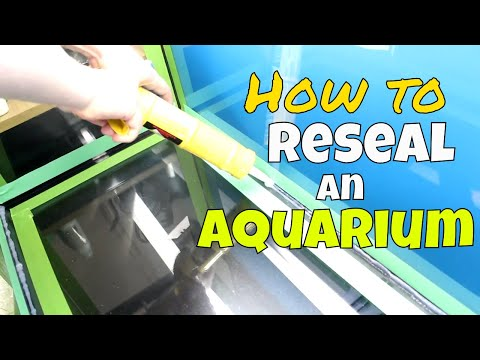 How To Reseal An Aquarium | Resealing Our 75 Gallon Fish Tank