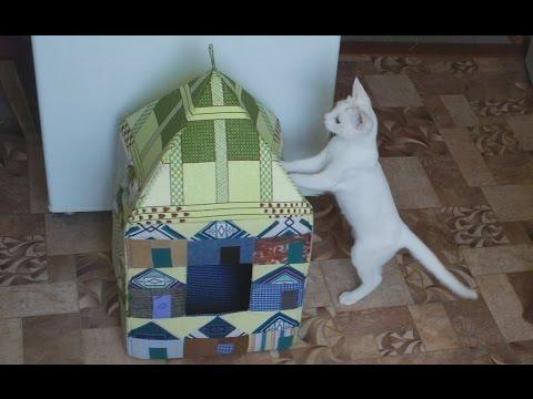 Как сделать домик для кошки