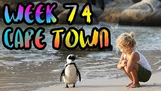 The BEST and the WORST of Cape Town. Sharks, Penguins, and Robbers!! /// WEEK 74 : Cape Town