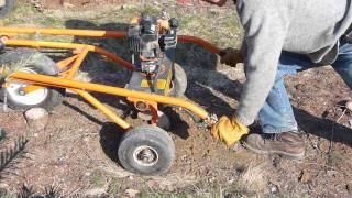 P1040843 Planting Christmas trees