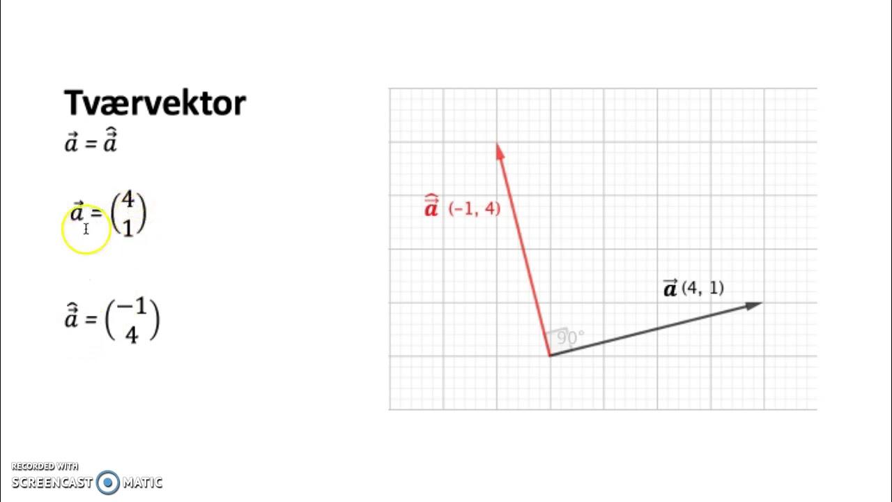 I Vektorer I Mundtlig matematik aflevering