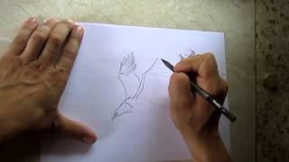 как нарисовать орла(, 2015-06-20T12:39:57.000Z)