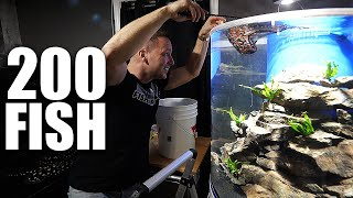 Adding Fish to aquarium and SECRET DIY tank build reveal!!