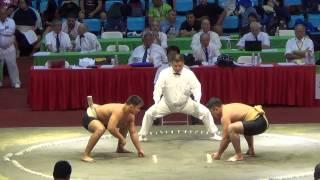 Сумо.Чемпионат мира по Сумо 2014  (RUS vs  BRA)