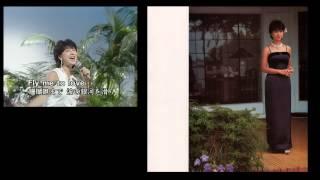 河合奈保子 コンサート・パンフレット集 (別バージョン) thumbnail