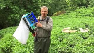 Çay toplama makinesi